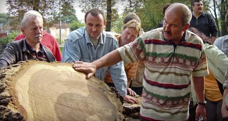 Weiterbildungen zum Thema Baum
